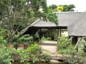 Inkwenkwezi Private Game Reserve - 7