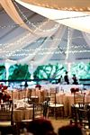 Affordable & Luxury Event Rentals - 2