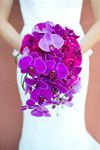 Glenda Pradella Wedding Flowers - 5