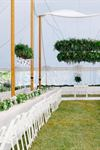 Ideal Wedding & Events - 7