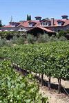 Byington Vineyard And Winery - 5