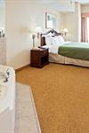 Country Inn and Suites By Carlson, Indianapolis Airport South - 6