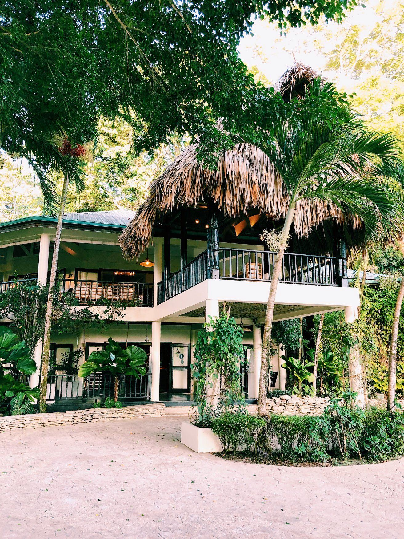 Copal Tree Lodge - 1