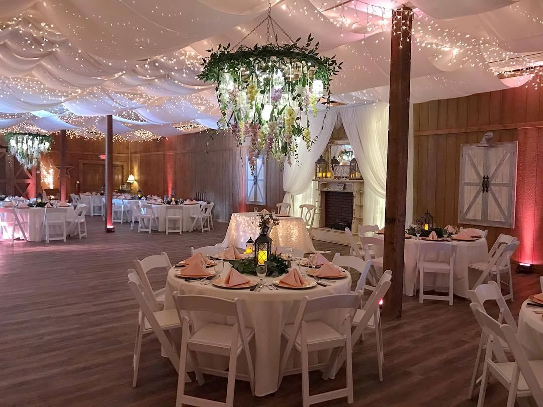 Harmony Haven Events - 6