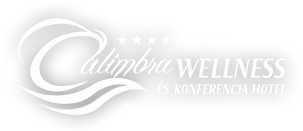 Calimbra Wellness and Conference Hotel - 1