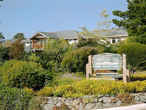 Cambria Pines Lodge - 3