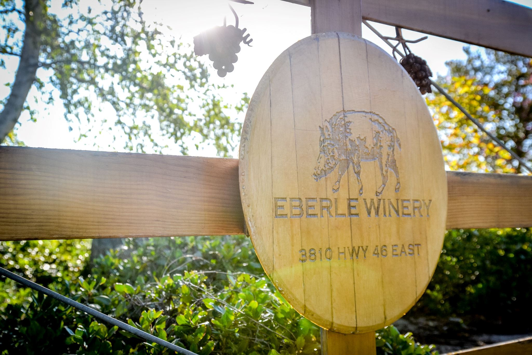 Eberle Winery - 2