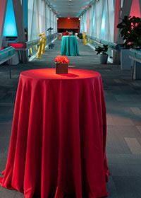 Starlite Events at the Saint Louis Science Center - 6