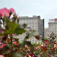 Congress Plaza Hotel - 7