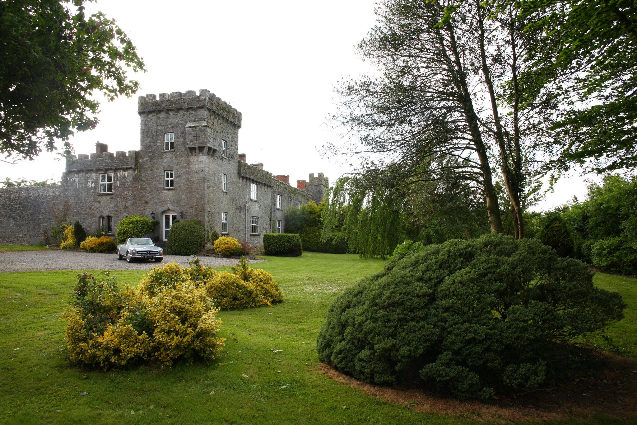 Fanningstown Castle - 7