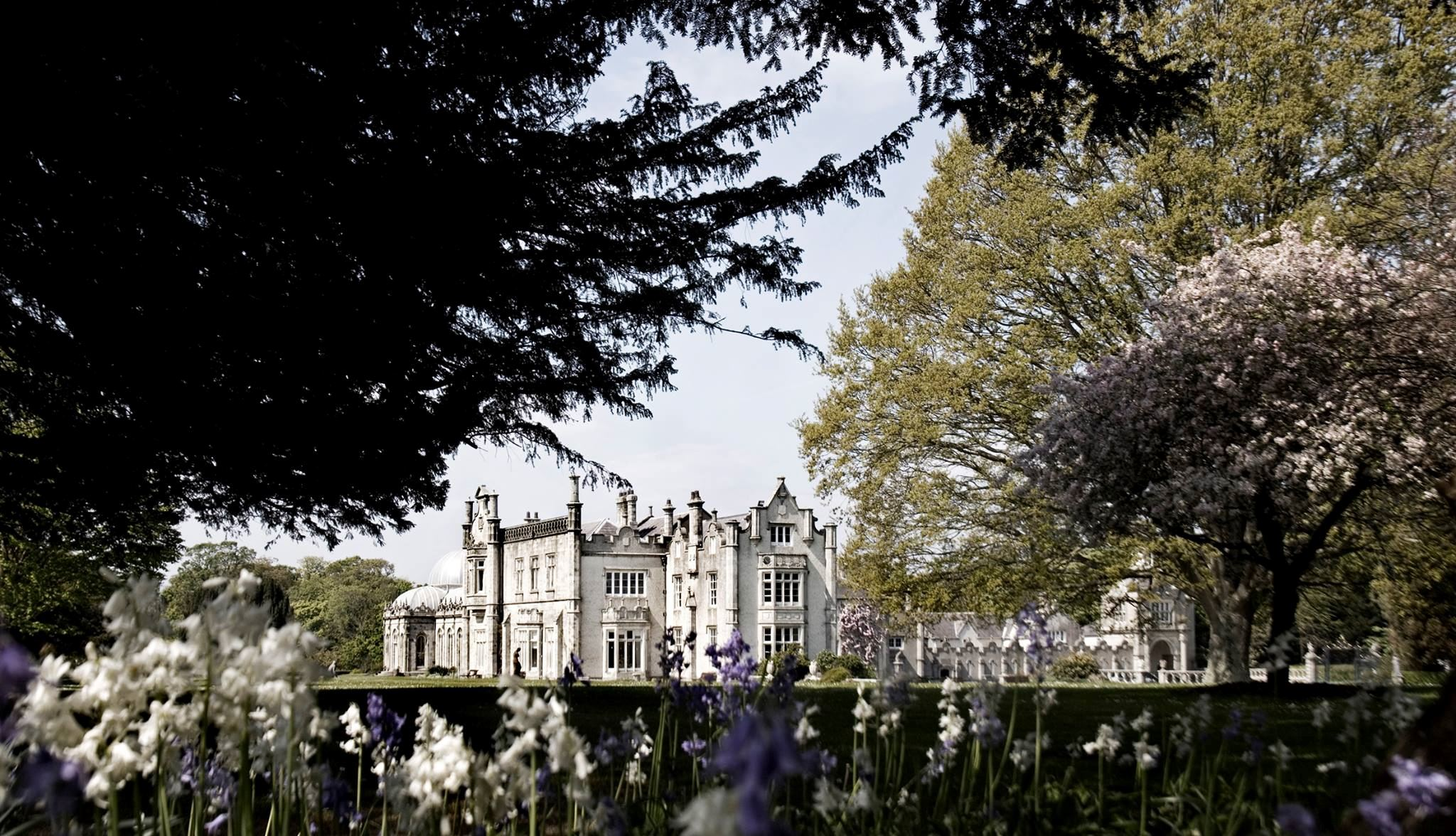 Killruddery House & Garden - 4