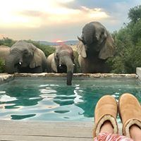 Amakhala Game Reserve - Bukela Game Lodge - 1