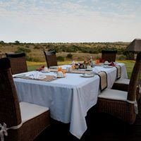 Amakhala Game Reserve - Hlosi Game Lodge - 5