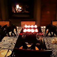 Amakhala Game Reserve - Bush Lodge - 3