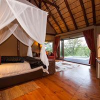 Amakhala Game Reserve - Bush Lodge - 2