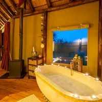 Amakhala Game Reserve - Bush Lodge - 7