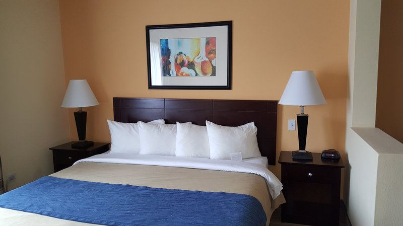 Country Inn and Suites by Carlson, Prospect Heights - 7