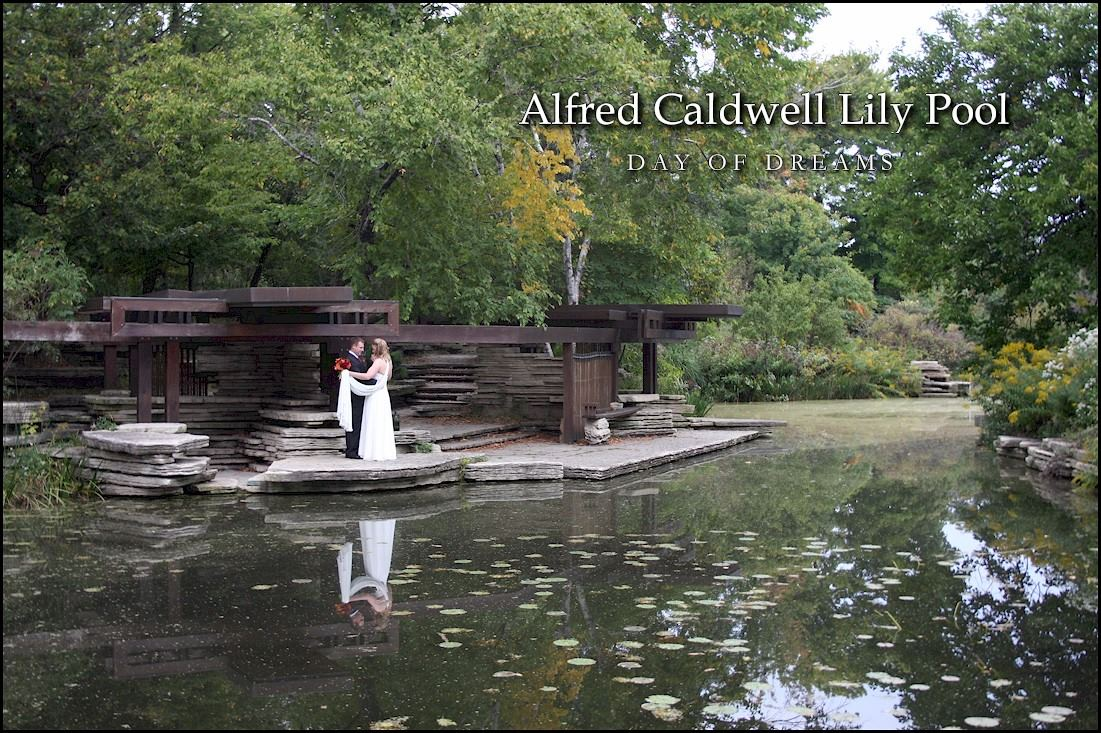 Alfred Caldwell Lily Pool - 1