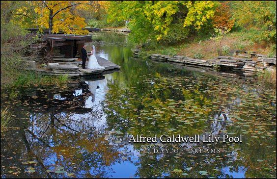 Alfred Caldwell Lily Pool - 7