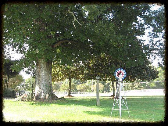Clearview Farm Weddings and Events, LLC - 2
