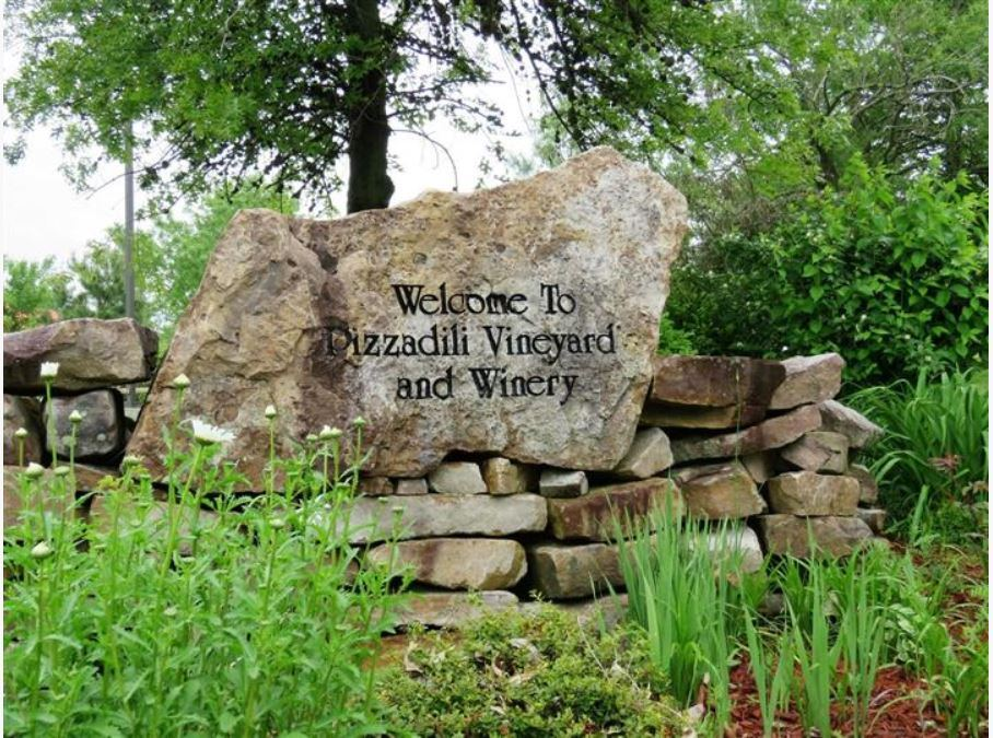 Pizzadili Winery - 1