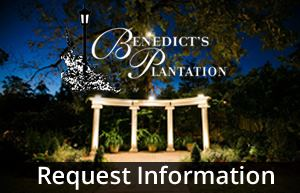 Bendict's Plantation - 4