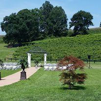 Cave Hill Vineyard, LLC - 5