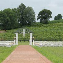 Cave Hill Vineyard, LLC - 4