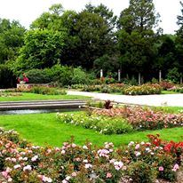 Boerner Botanical Gardens Hales Corners Wisconsin Wedding Venue