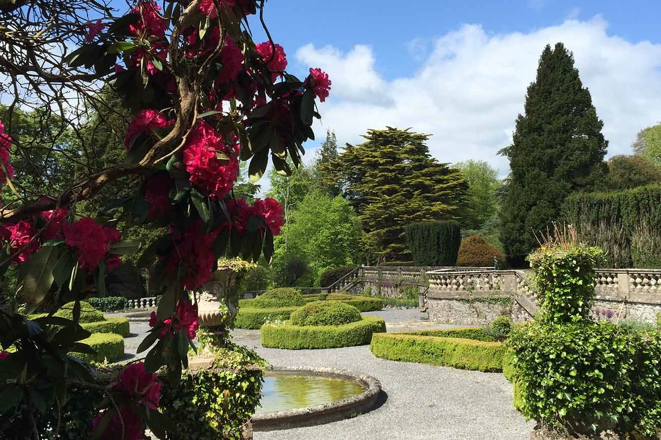 Gloster House and Gardens - 7