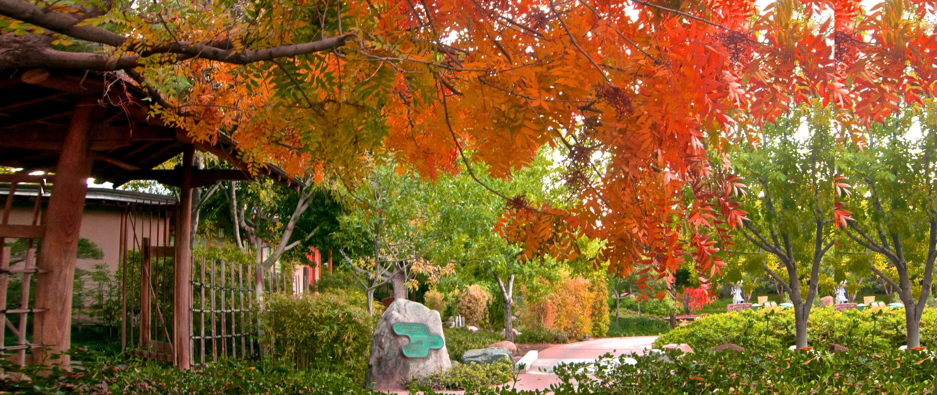 Japanese Friendship Gardens Of Phoenix - 2