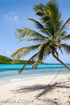 Caribbean Sailings - weekly cruises - 4