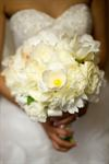 Ciao Bella Weddings and Flowers - 1