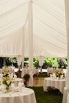 Special Occasion Rentals - 4