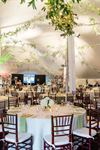 Dallas Peerless Events & Tents - 5