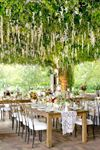 Bliss Weddings & Events - 5