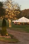 Mid State Tent Rentals - 6