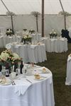 In-Tents Party Rentals - 2
