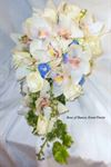 Enchanted Florist - 6