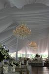 Majestic Tent & Event - 6
