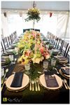 Celebrate Event and Party Rental Bigfork - 4