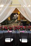 Elite Events Rentals - 7