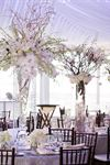 The Floral and Function Decor Company - 2
