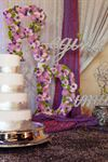 Occasion Services & Events - 3