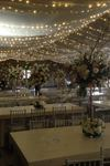 Alpine Event Rentals - 7