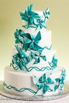 Cake Couture - 7