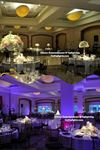 AllStar Entertainment & UpLighting - 6