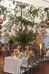 Stamford Tent & Event Services - 5