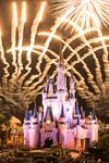 Disney's Fairy Tale Honeymoons - 7