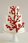 Beautiful Cakes and Bridals - 3